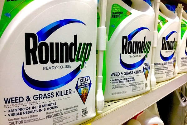 Did FDA Announce to Shut Down Residue Program in Monsanto?