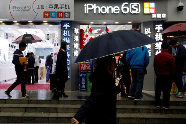 Apple Distributors arrested